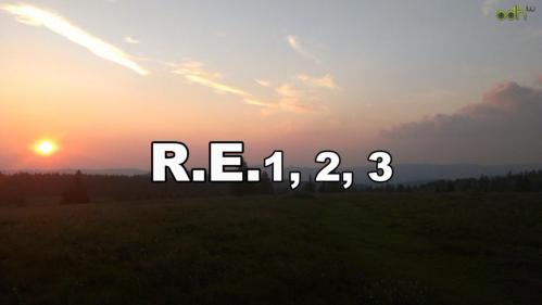 Re123